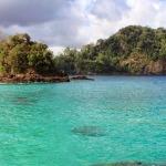 Teluk hijau 7