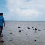 bama beach baluran