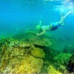 java-exotica-bangsring-snorkeling